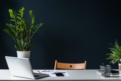 REMAX Premium gayrimenkul danışmanı olmanın avantajları #3 – Profesyonel ofis kadrosu desteği